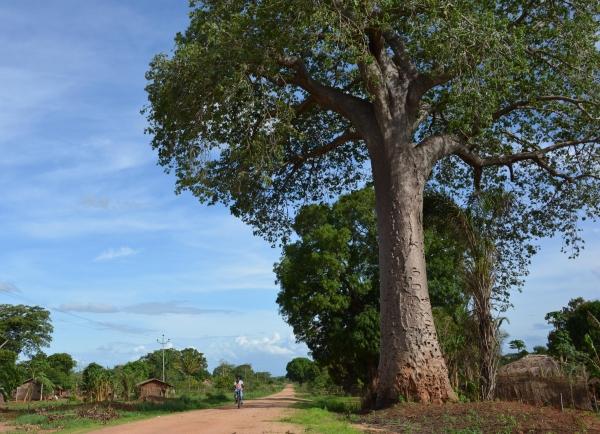La misión compartida en Angola se hace realidad